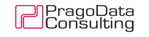 PragoData Consulting